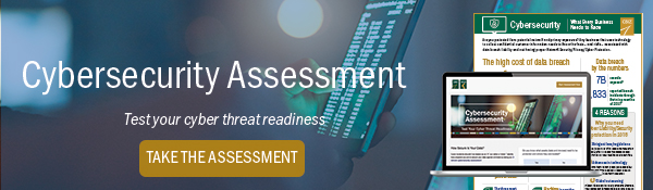 Cyber risk assessment screenshot