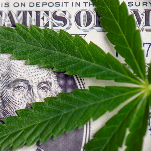 The State of Cannabis Banking
